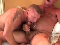 Naturalbornbreeders - AJ Swallows Timothy Nathan Shields
