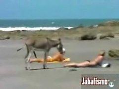 69 Mom Porn